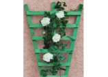 Rigid Fan Trellis - 0.9 x 0.6m