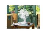 Oscillating Desk Fan - 12 inch