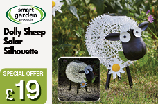 Solar Silhouette Dolly Sheep – Now Only £19.00