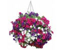 Universal Hanging Basket Liners - Pack of 2