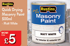 Quick Drying Masonry Paint 500ml - Matt White – Now Only £5.00
